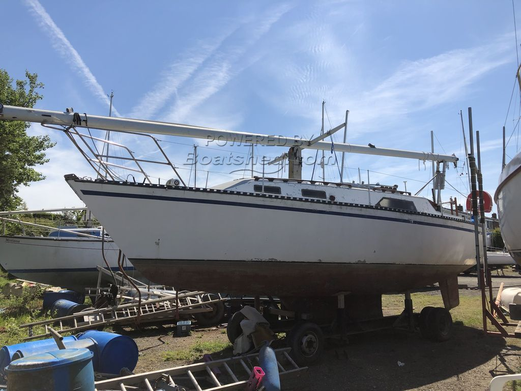 Bruce Roberts 310  Sail No. 1