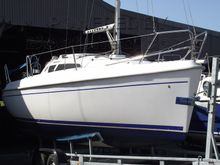 Sportina 730 trailer-sailer