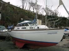 Colvic Sea Rover 28