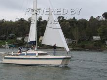 Island Packet Packet Cat 35 Catamaran