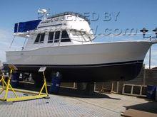 Mainship 390