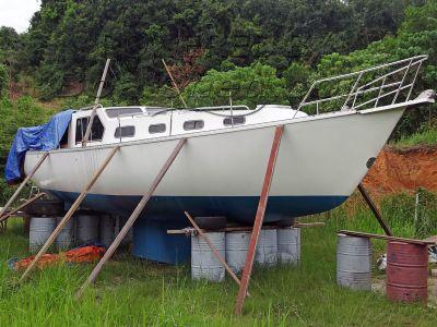 Challenger Yachts Australia 39 MK11 Pilot House (New Build)