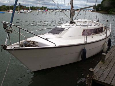 Sailfish 25