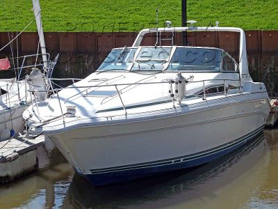 Sea Ray 310 DA Sundancer
