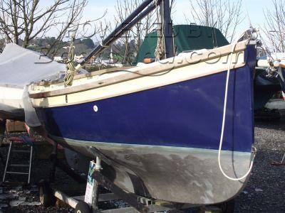 Oystercatcher 16