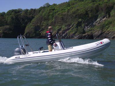 Ribeye ECO E495