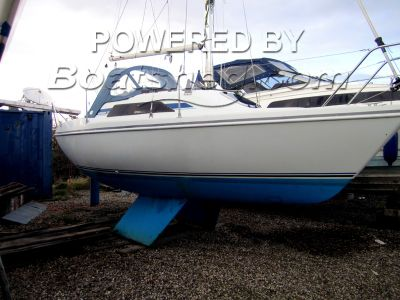 Hunter Horizon 23
