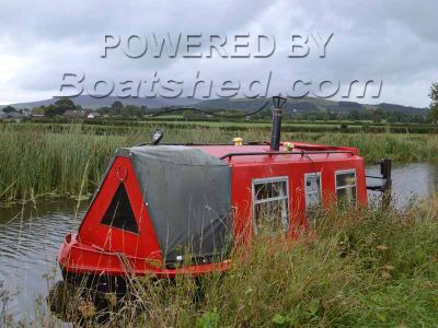 Narrowboat Springer 20