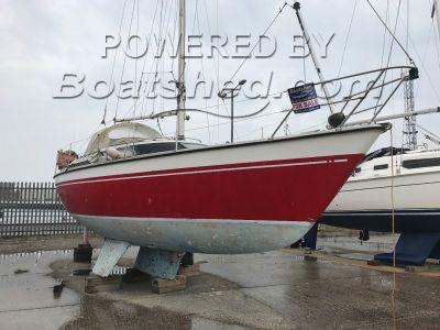 Prospect 900 Triple keel