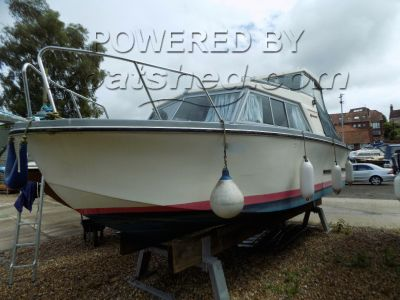 Birchwood 22 All Purpose Cruiser