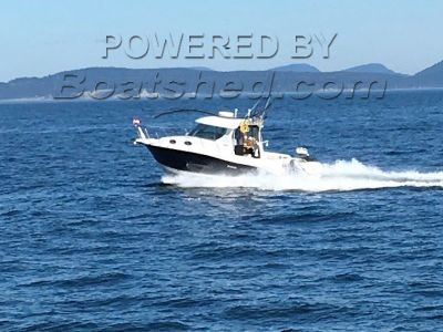 Seaswirl Striper 2901 Twin 250 Evinrudes