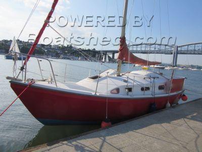 Macwester Rowan Rose 8m