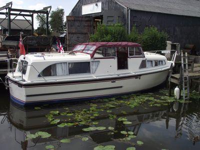 Broom Skipper 30