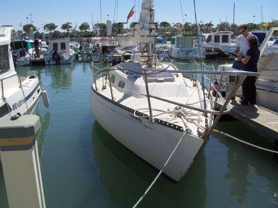 Puma 26 (velero)