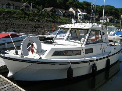 Shetland Black Marlin