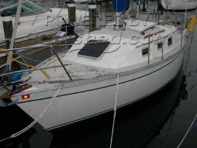 Watkins Yachts 25