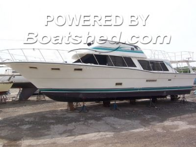 Bluewater Yachts 4700 Sedan Bridge