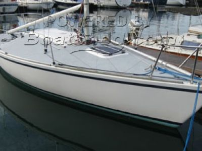 Westerly J/24