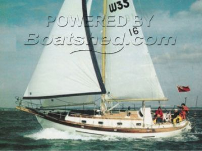 Young Sun Nautic 35