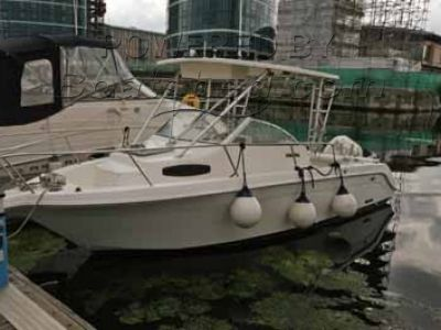 Wellcraft 270 Offshore Sport Fisher