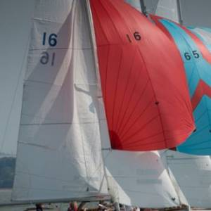 Cowes Classic Week attracts a strong fleet of Solent Sunbeams