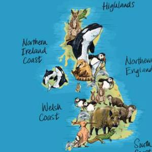The UK wildlife no-one knows exists