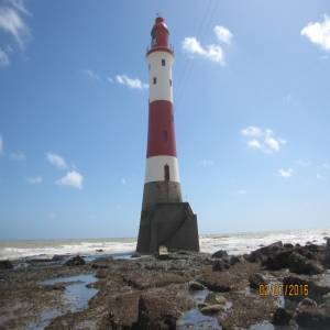 A Trip To The Lighthouse