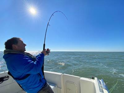 MDL Marinas to host the new Sea Angling Classic