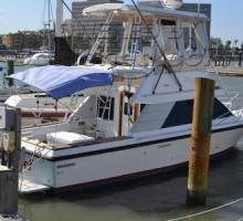 Black Friday Sale_For Boatshed Texas Listing