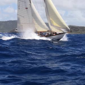 Boatshed sponsor Antigua Classic Regatta - Butterfly Race / Saturday