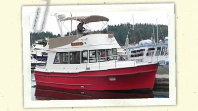 New Camano 31 Launched!