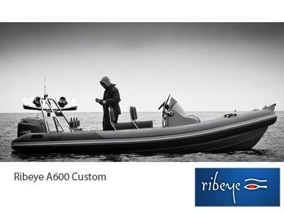 New instructions – Ribeye A600 Custom for sale