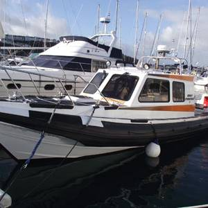Redbay Stormforce 11 for sale
