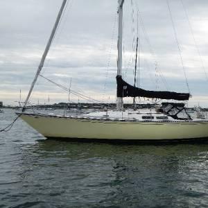 Boatshed Newport C&C 38 Racer/ Cruiser