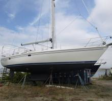 Boatshed Newport Features a 2004 Catalina MK II 42