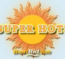 Super Hot 2013 Summer Boat Auction!