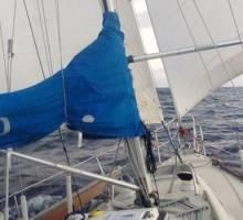 Capibara, Allegro 30 - So Far, So Good! - Canary Islands