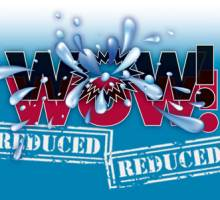 WOW! WOW! New 2012 Helmsman Trawlers® 37 Sedan...