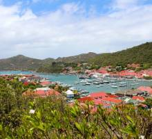 Capibara - The friendly Island St. Martin