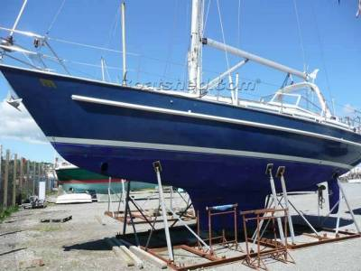 Boatshed's 20,000th boat for sale - Malo 39