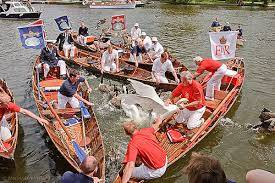 Swan Upping on the Thames this week!