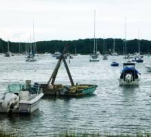 Danish SV Capibara - We don't just sail for pleasure