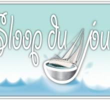 Sloop du jour - Jeanneau Sun Odyssey 45 DS