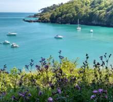 Boatshed Newsletter Summer 2015
