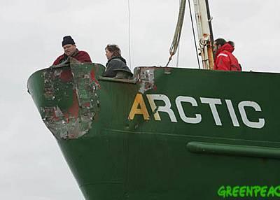 Boatshed onboard Arctic Sunrise
