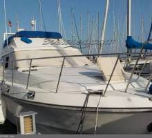 New listings for Boatshed Valencia